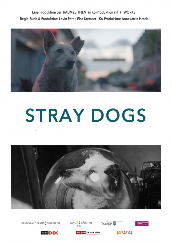 STRAY DOGS (AT)