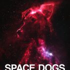 SPACE DOGS @72nd Locarno Film Festival